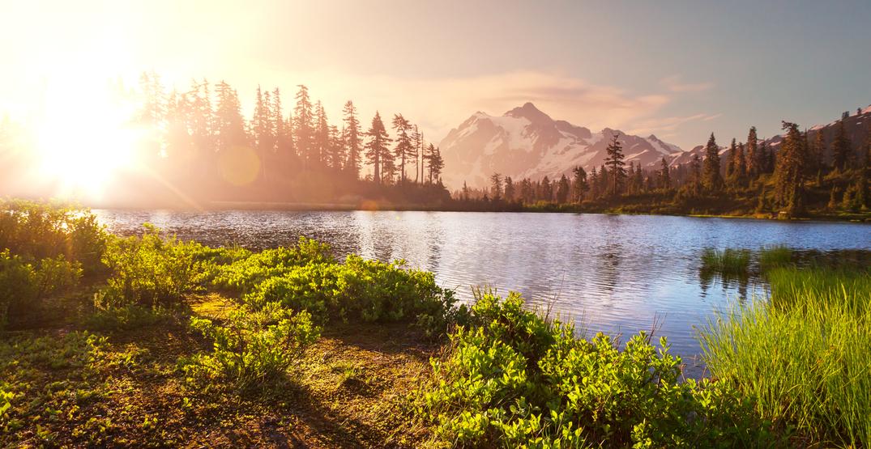 Washington, Oregon, and California band together in coronavirus pact