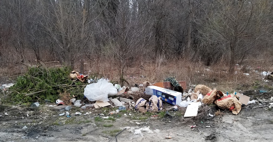 There's been a significant increase in illegal garbage dumping in Rouge Park