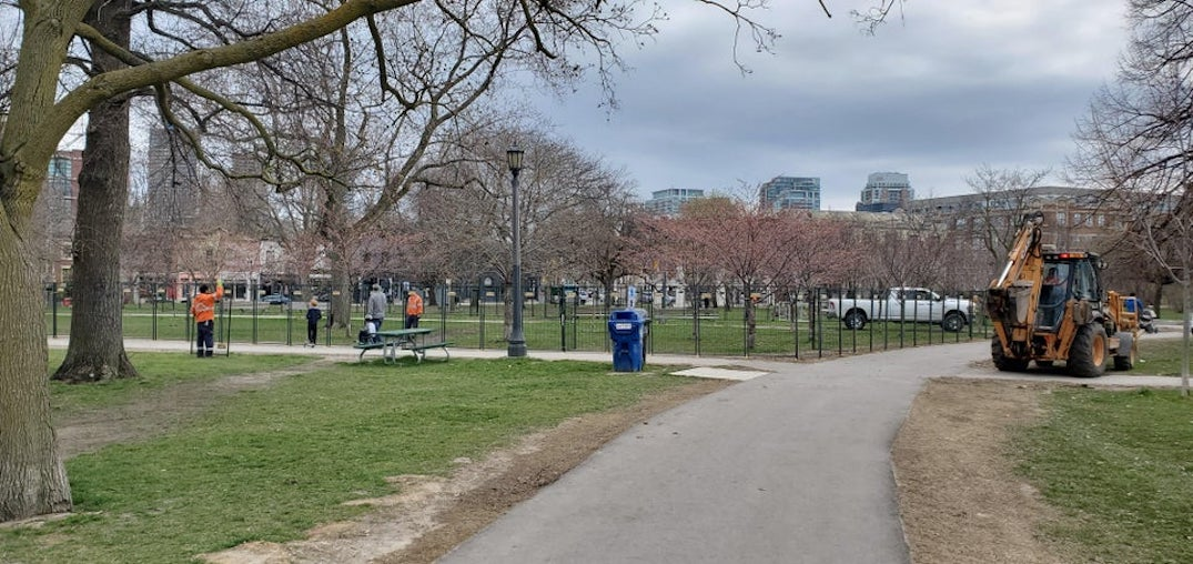 Toronto fences Trinity Bellwoods' cherry blossoms, adds enforcement during bloom period