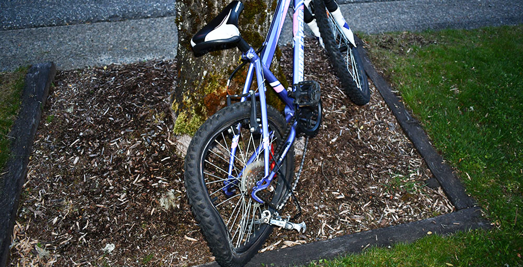 10-year-old recovering after colliding with car while riding bicycle: RCMP