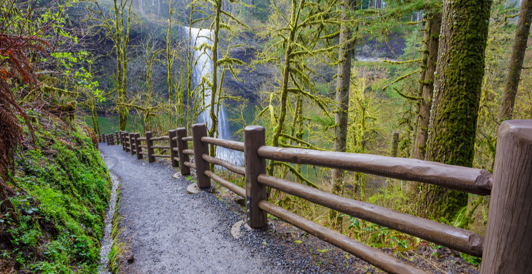 Oregon Governor Brown announces phased reopening of parks and rec sites