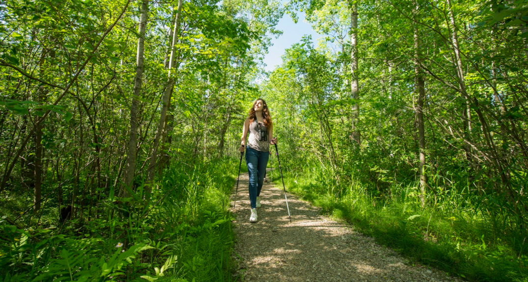 All Ontario parks and conservation reserves are free to access until end of month