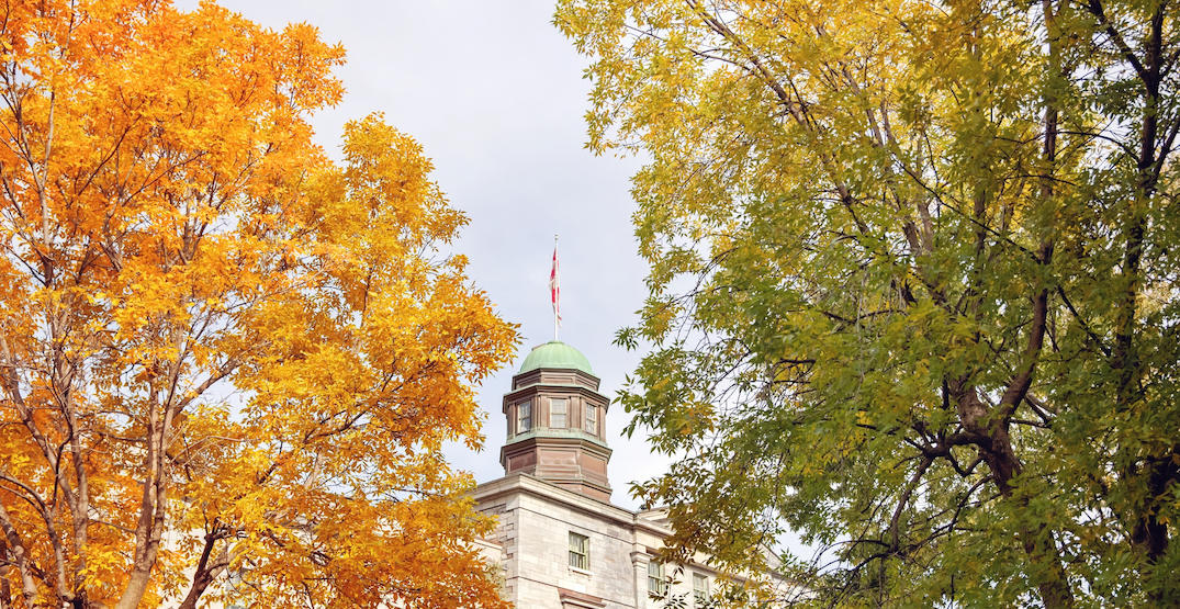 McGill and Université de Montreal to hold majority of fall semester classes online