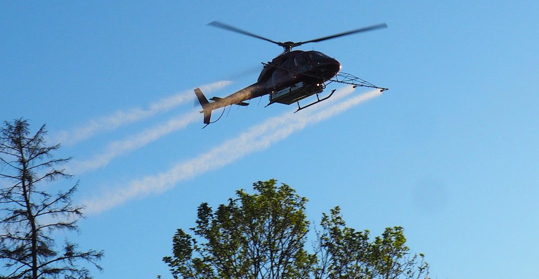There will be aerial spraying in parts of Toronto next week