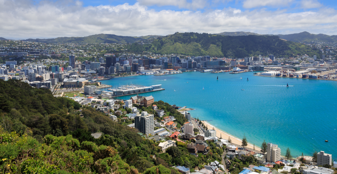 New Zealand has discharged its last coronavirus patient