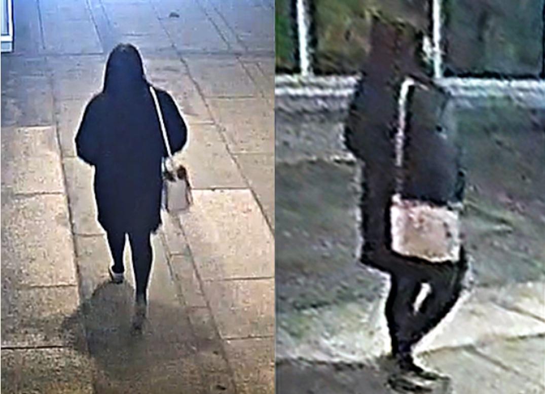 metrotown senior assault suspect