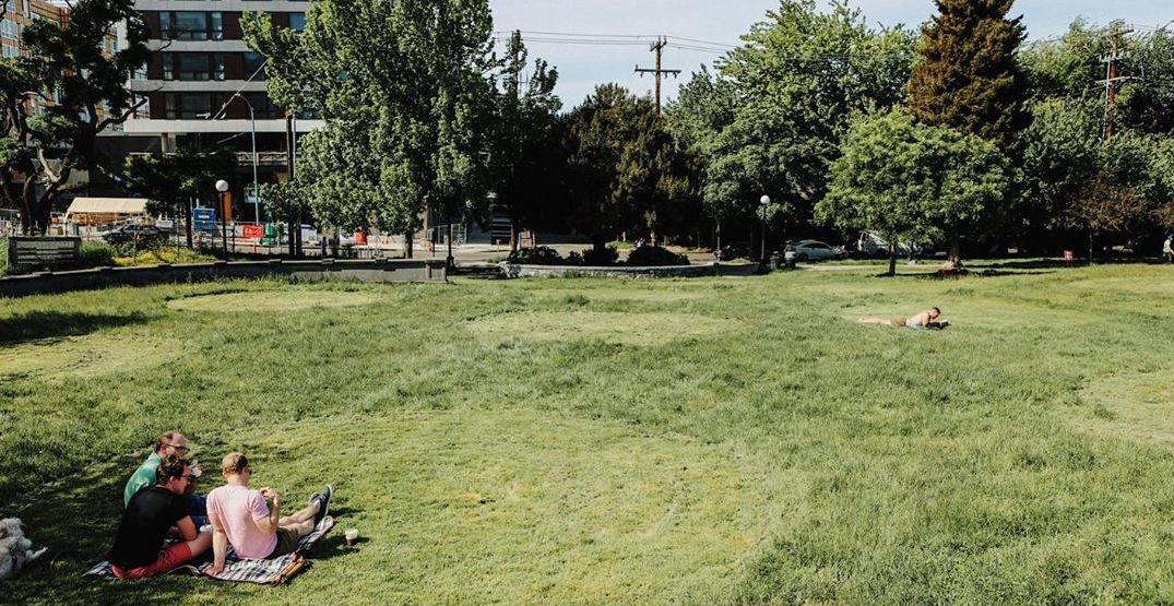 Seattle's Cal Anderson Park spotted with physical distancing dots (PHOTOS)