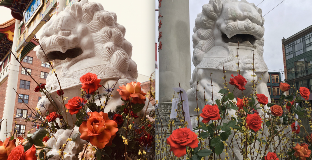 Chinatown lions adorned with flowers following racist vandalism (PHOTOS)