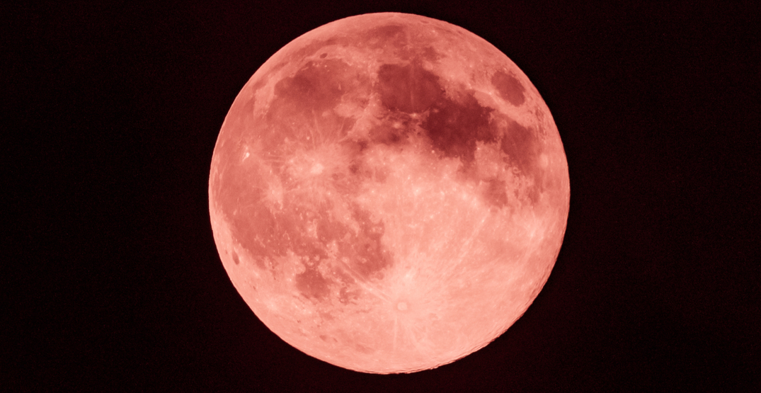 "A full ""Strawberry Moon"" is set to rise over Toronto tonight"