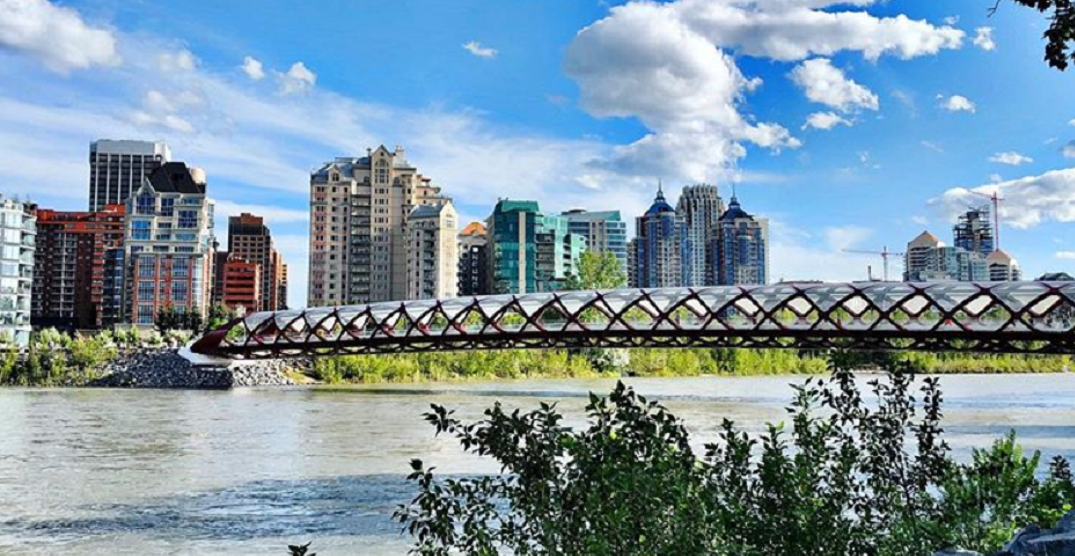 11 pics showing summer well on its way to Calgary (PHOTOS)