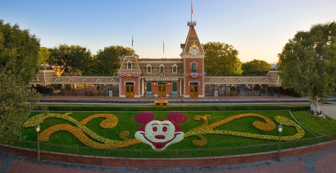 Here is what the gradual reopening of Disneyland will look like