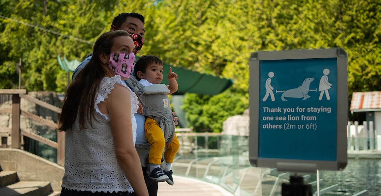 Vancouver Aquarium reopening its doors to visitors this week