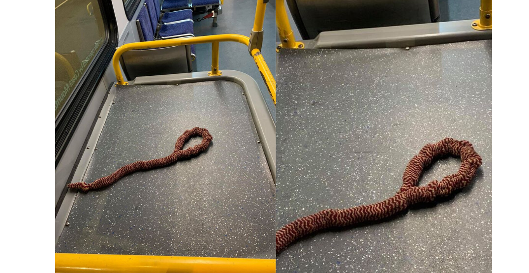 Vancouver bus passenger allegedly tells driver to hang himself with noose