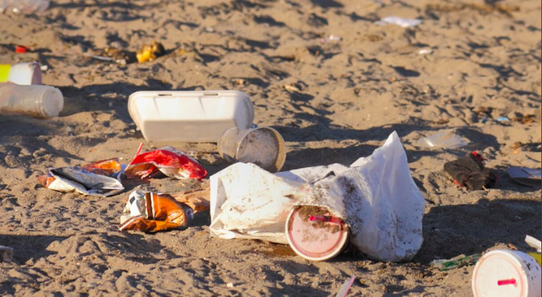 Toronto residents could face $500 fine if caught littering in beaches, parks