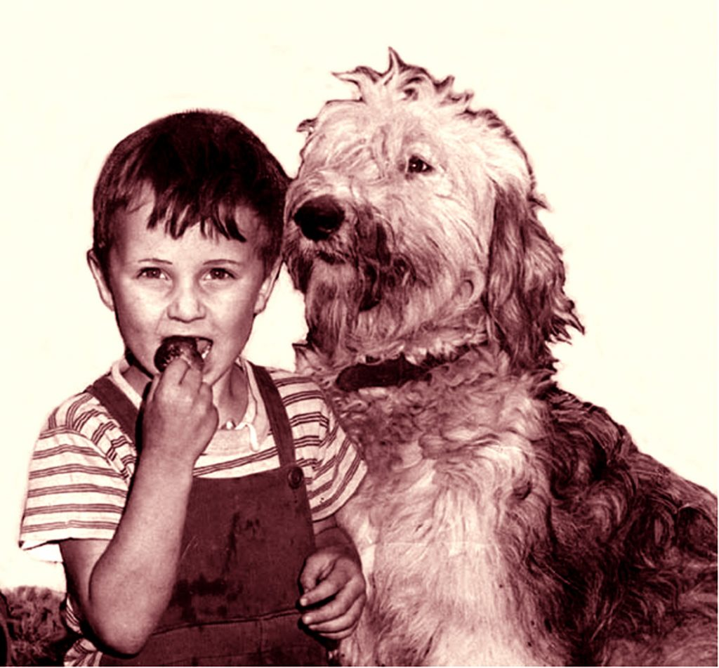 Arran Stephens as a chiled eating berries with his dog