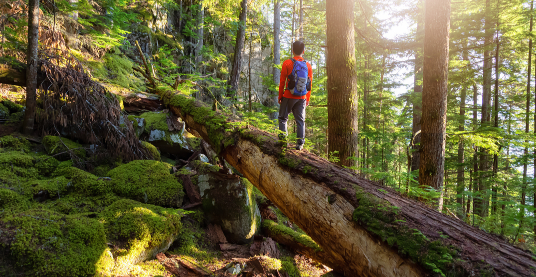 10 pieces of hiking etiquette to know before heading out BC trails