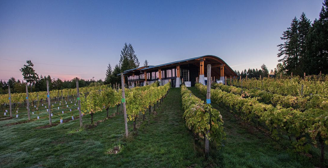 BC recognizes the Cowichan Valley as a new wine-producing region