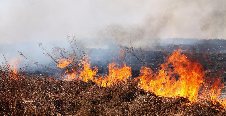 Richmond's serial arsonist sets fire near elementary school