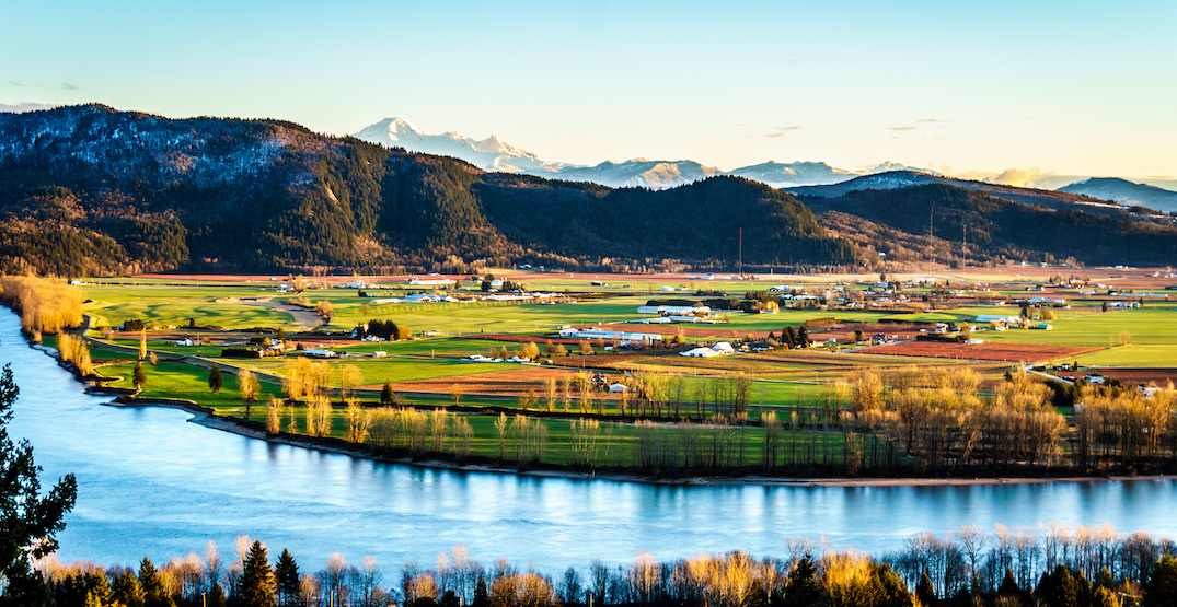 $5 billion Abbotsford Tech District looks to become the region's agritech hub