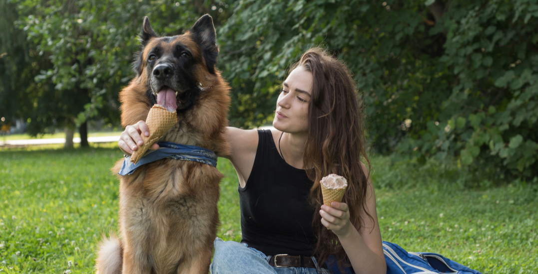 9 lesser-known dog-friendly spots in and around Vancouver