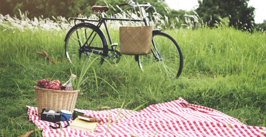 Everything you need for the perfect picnic this summer