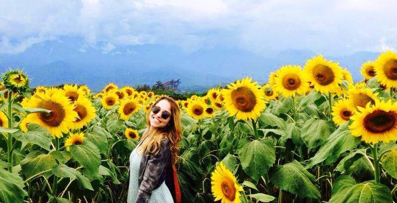 chilliwack sunflower festival