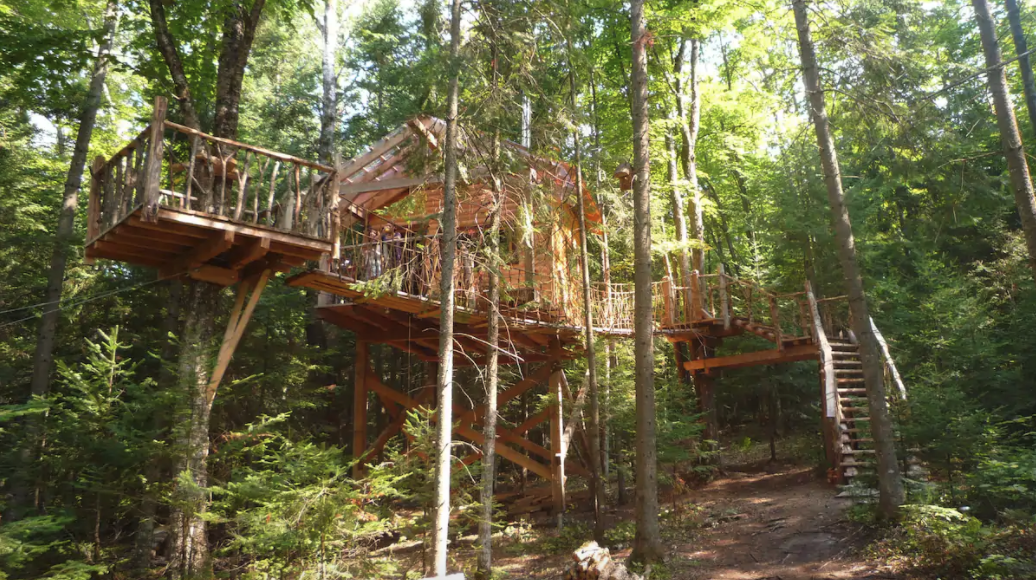 6 unbelievable treehouses you can rent this summer