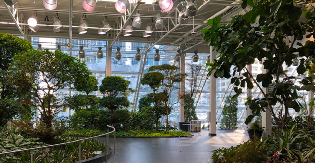 The CORE's Devonian Gardens have officially reopened to the public
