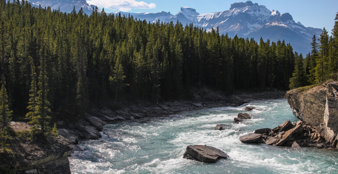 Man missing after being swept away by river in Banff National Park