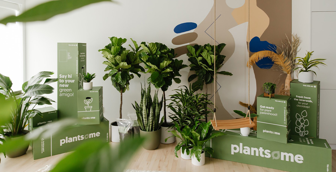 A new online-only plant store launches in BC