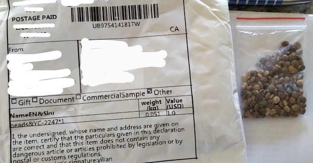 Canadian government warns against planting mysterious seeds received in the mail