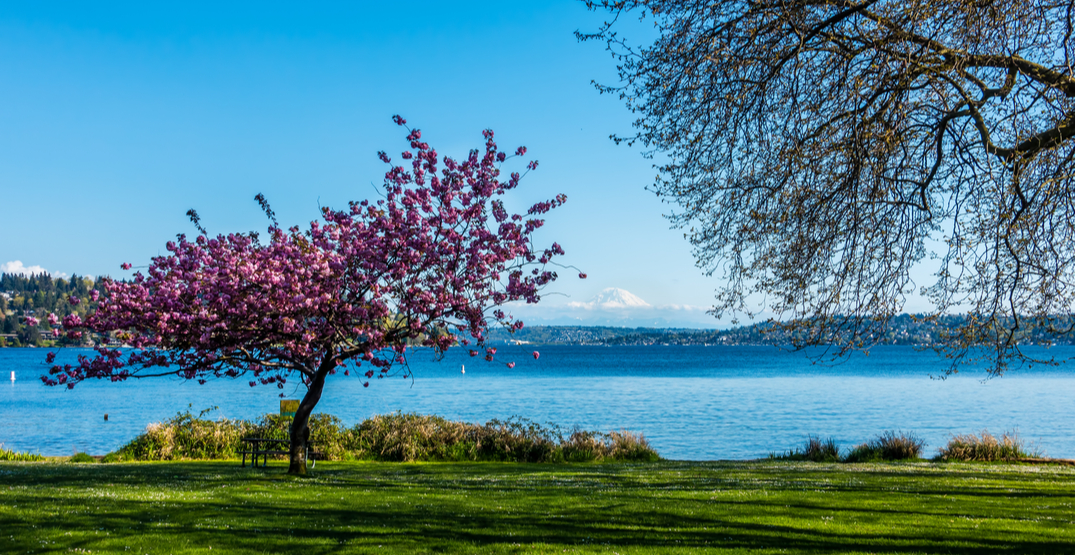 7 stunning spots for your next outdoor workout in Seattle