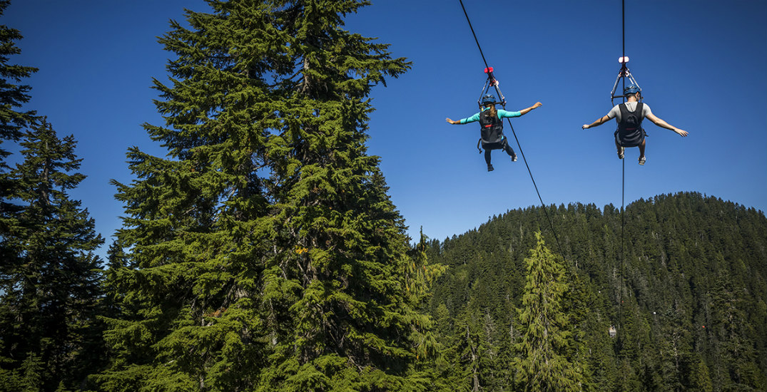 How to spend a complete day on Grouse Mountain this summer