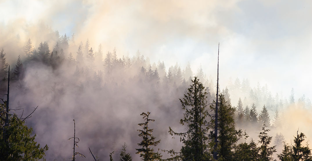 Lightning storm sparks 15 new wildfires in BC's Interior