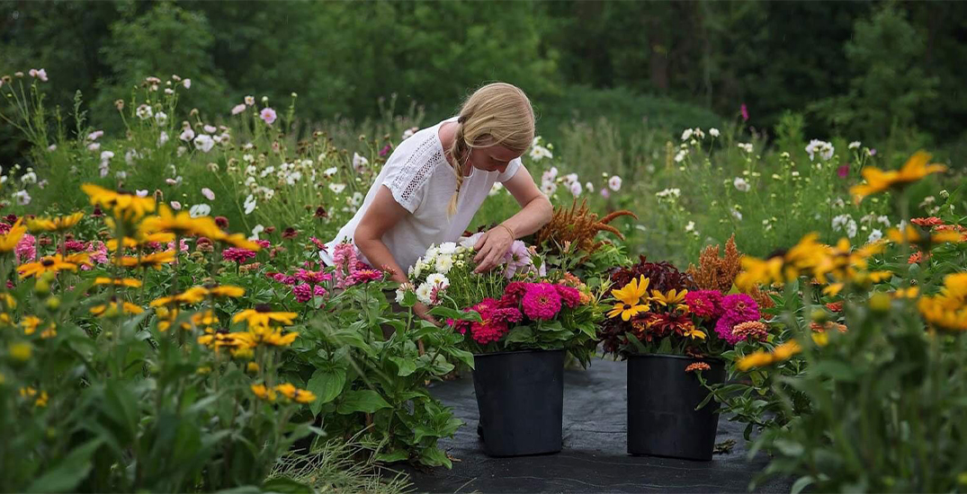 You can visit this flower farm near Toronto this summer