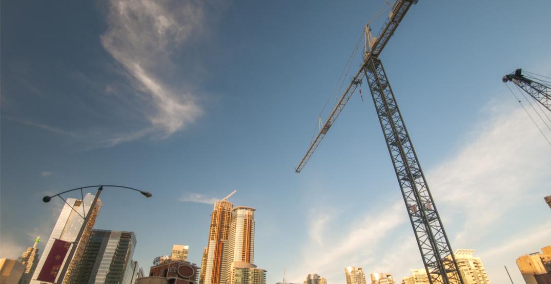 Toronto raccoon gets stuck on construction crane for hours