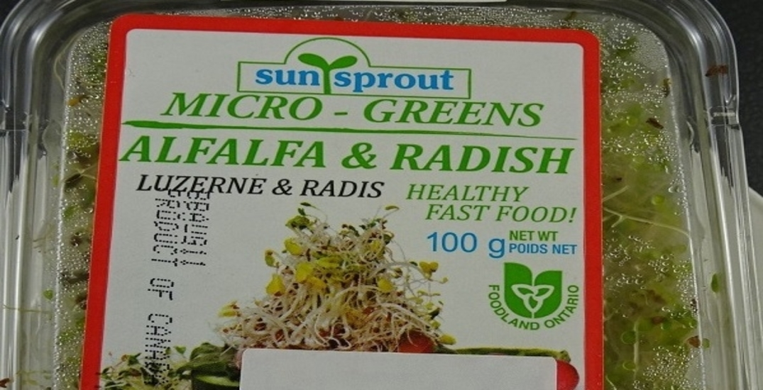 Sunsprout product recalled due to possible salmonella contamination
