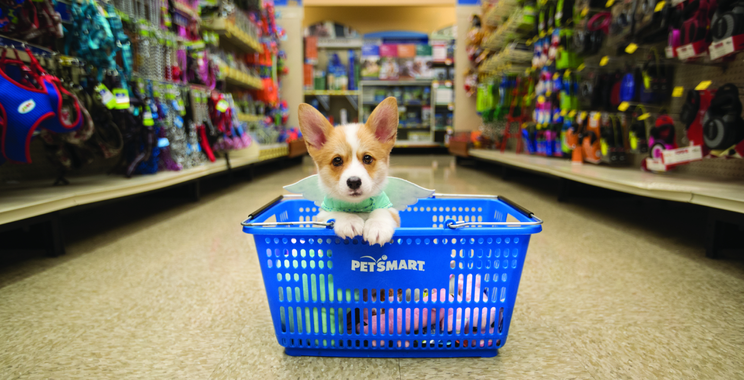A massive 6,331 sq ft PetSmart location just opened in Liberty Village