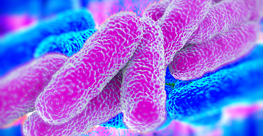 Legionnaires disease cluster confirmed in New Westminster