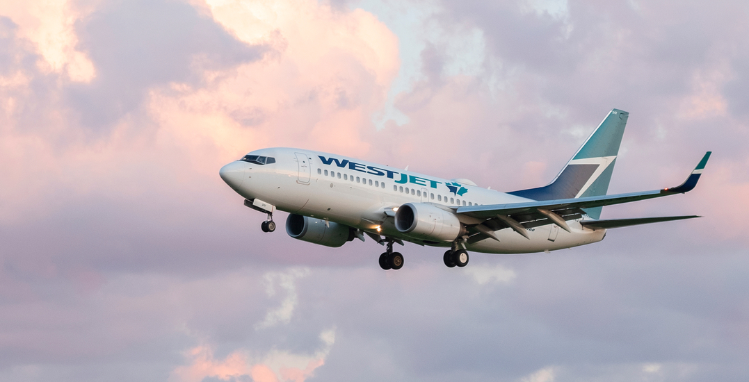 20 Flights To And From Toronto Identified With Confirmed Coronavirus Cases News