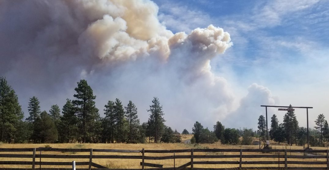Oregon Health Authority issues tips for smoke safety during wildfires