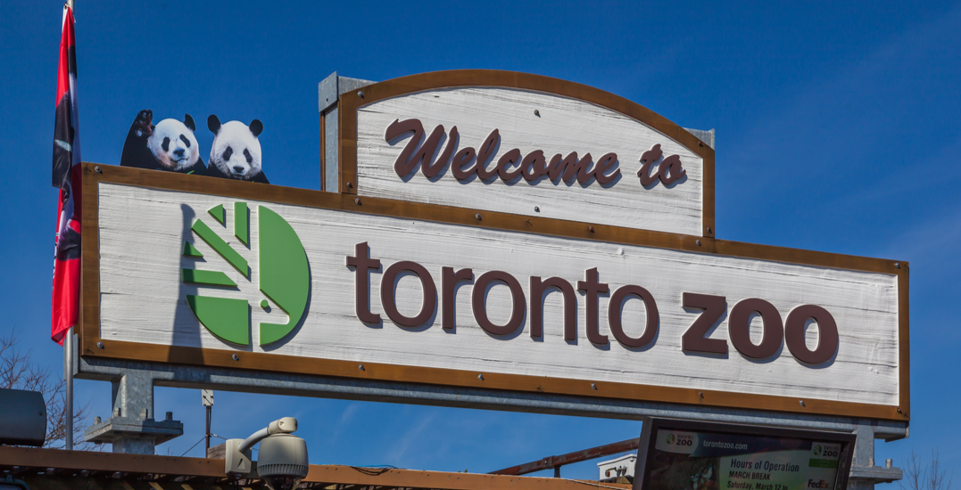 You can try local brews at the Toronto Zoo's African Savanna this month