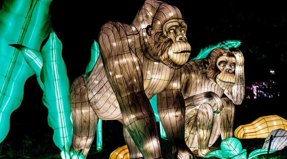 An impressive illuminated lantern festival is coming to the Woodland Park Zoo this fall