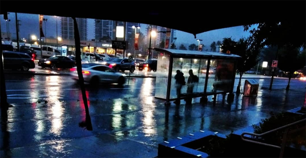 Fall is in full swing as storm brings torrential rain to BC (PHOTOS)