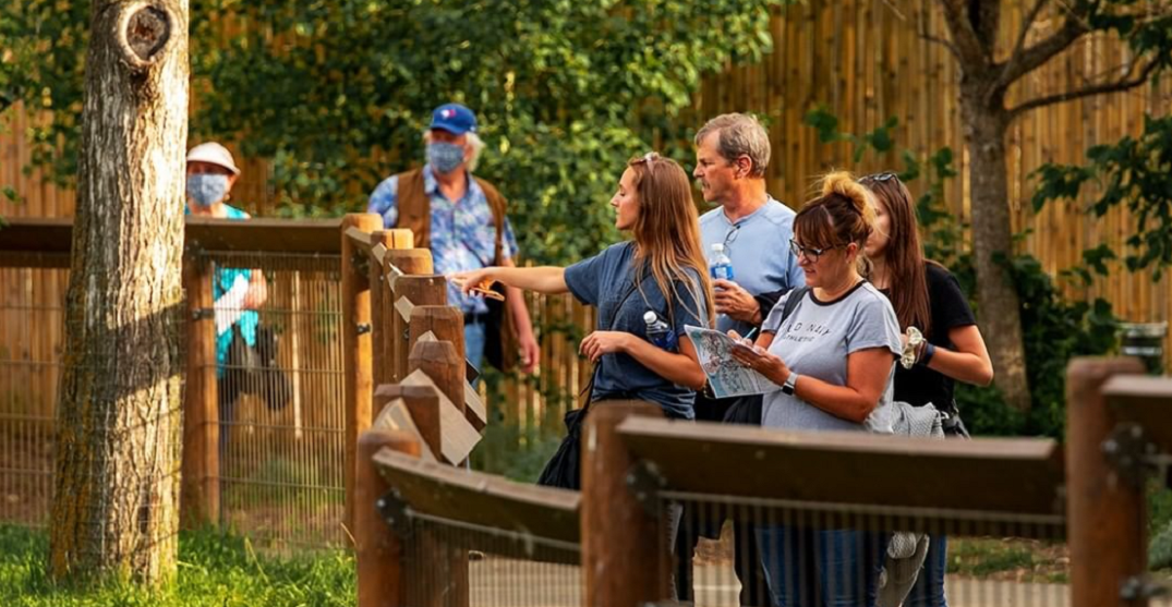 The Calgary Zoo is hosting a huge escape experience this Halloween