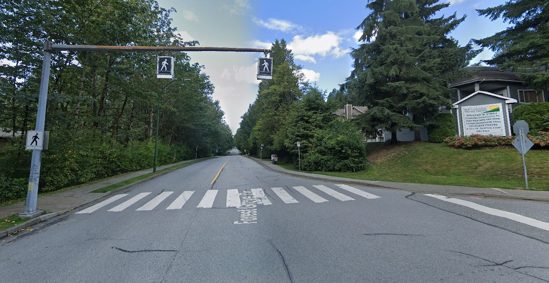 forest grove drive burnaby