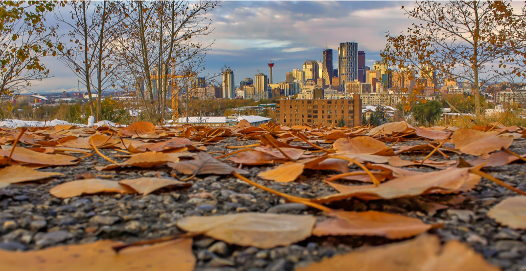 Cooler days on their way for Calgary weather this week