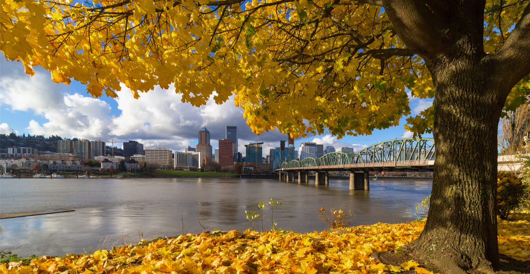 Cooler weather and clouds in the forecast for Portland this week