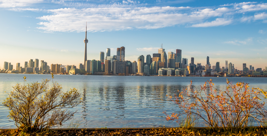 10 distanced things to do in Toronto this week: October 13 to 18