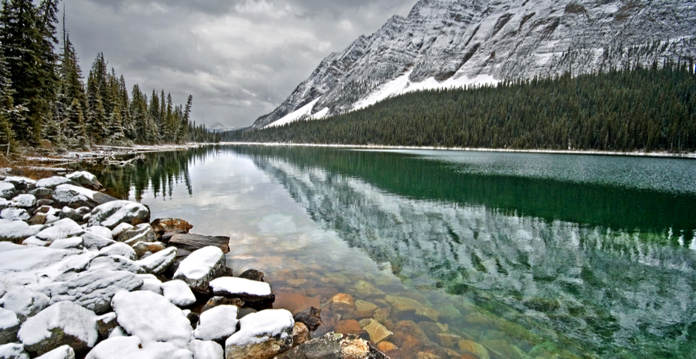 Banff turned into a winter wonderland overnight (PHOTOS)